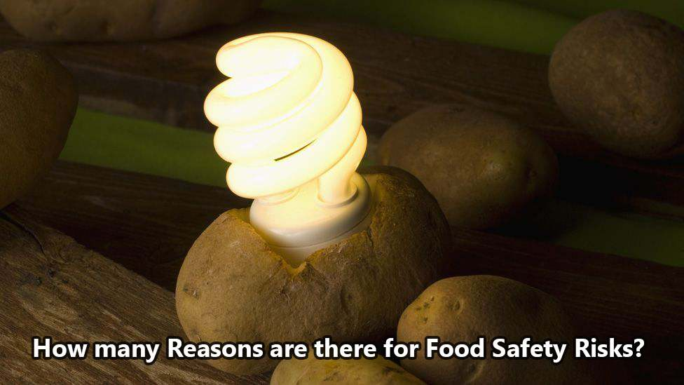 How Many Reasons are There for Food Safety Risks