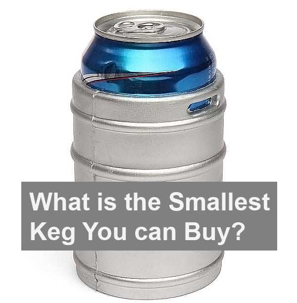 whats is smallest keg you can buy?