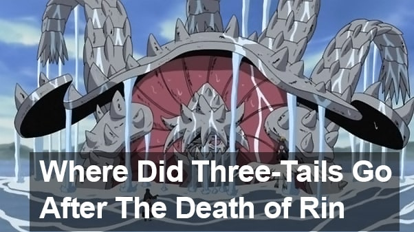 Where Did Three-Tails Go After The Death of Rin?