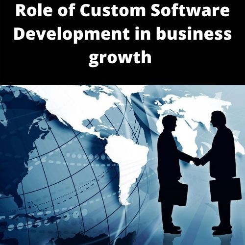 Role of Custom Software Development in business growth